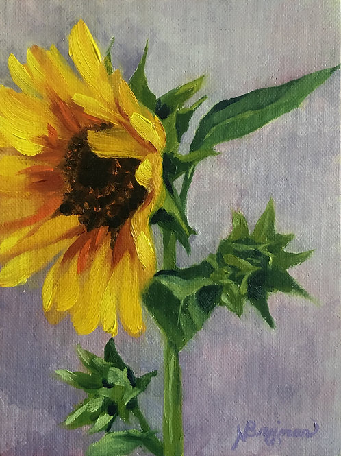 sunflower, oil painting of sunflower, single sunflower, yellow, plant