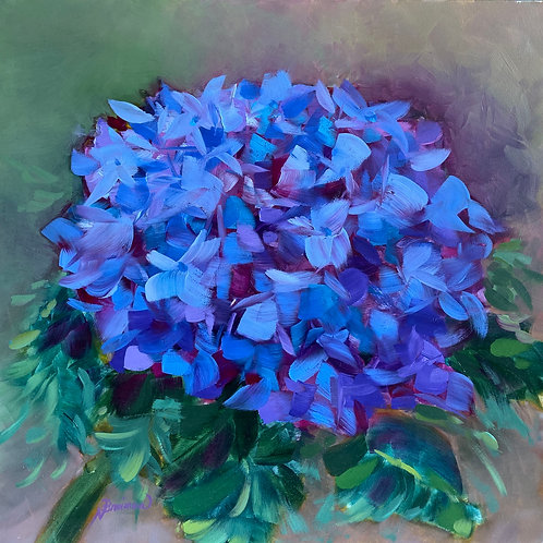 oil painting hydrangea, blue hydrangea, spring