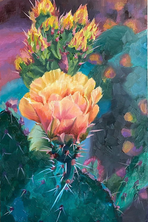 yellow cactus bloom, yellow cactus flower, pink, orange, yellow