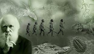 Anniversario Darwin