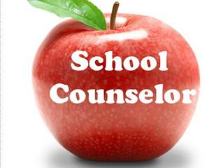 School Councilor