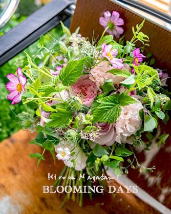 Flower styling  花のある暮らし