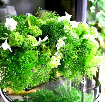 Flower styling 11月