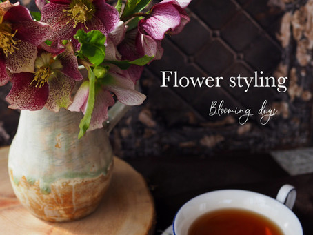 Flower styling 啓蟄
