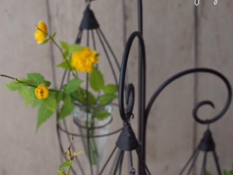 Flower styling 山吹