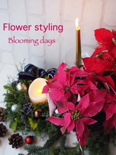 Flower Styling ポインセチア