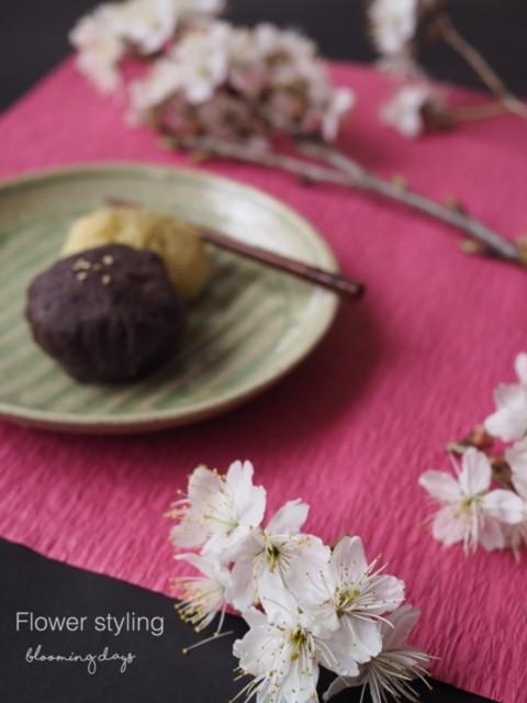 Flower styling  花のある暮らし 春分の日