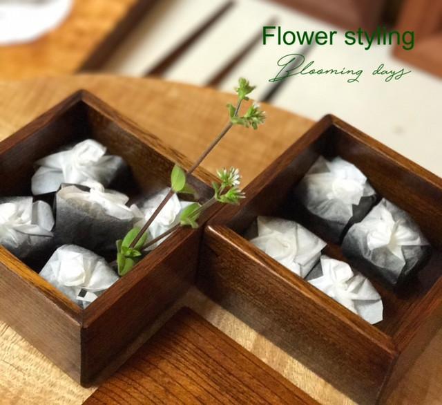 Flower styling 花のある暮し ハコベラ 繁縷