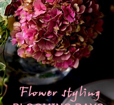 Flower styling 寒露