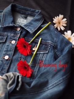 Flower Styling ガーベラ