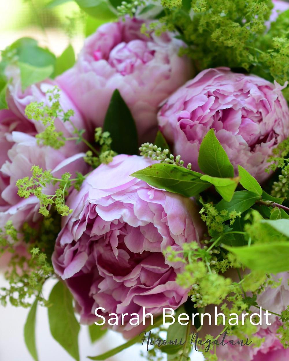 Flower styling 花のある暮し サラ・ベルナール