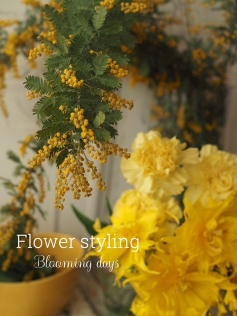 Flower styling  花のある暮らし ミモザ