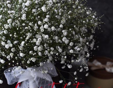 Flower styling  冬至
