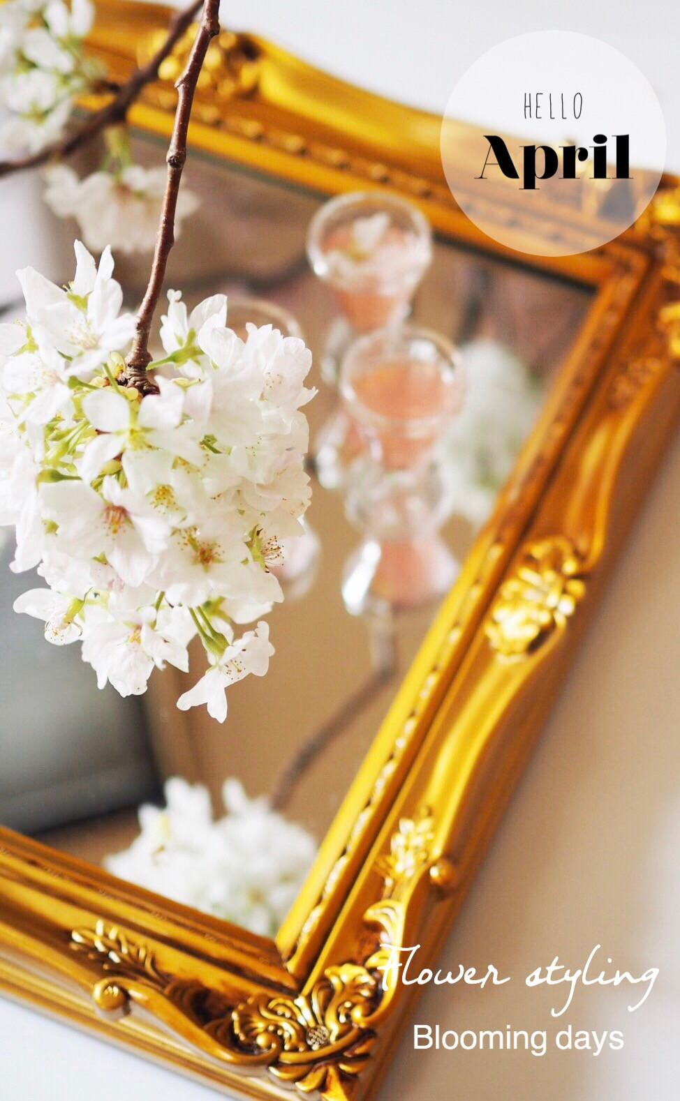 Flower styling 花のある暮し 桜