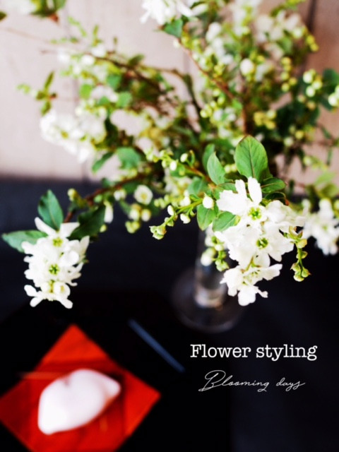 Flower styling 花のある暮し 利休梅