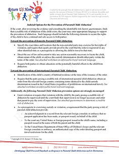 Judicial PCA Prevention Options.png