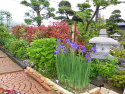 1 田辺邸庭