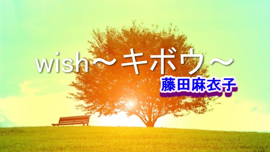 wish~キボウ~