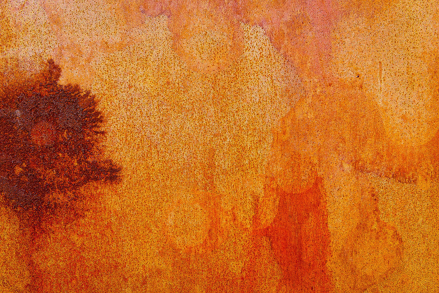 Orange Rust II
