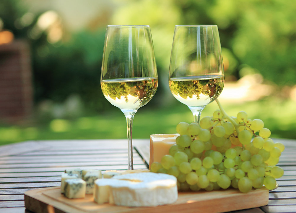 Wine in South West France