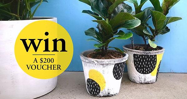 thumbnail_Garden-Street-Garden-Banner-v2