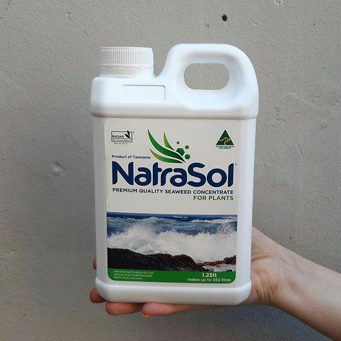 Natrasol Seaweed Concentrate