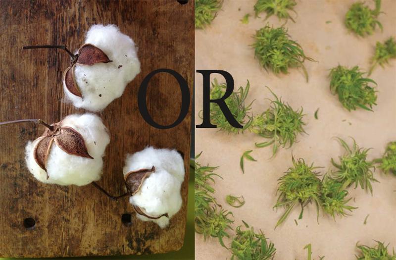 Cotton or Hemp