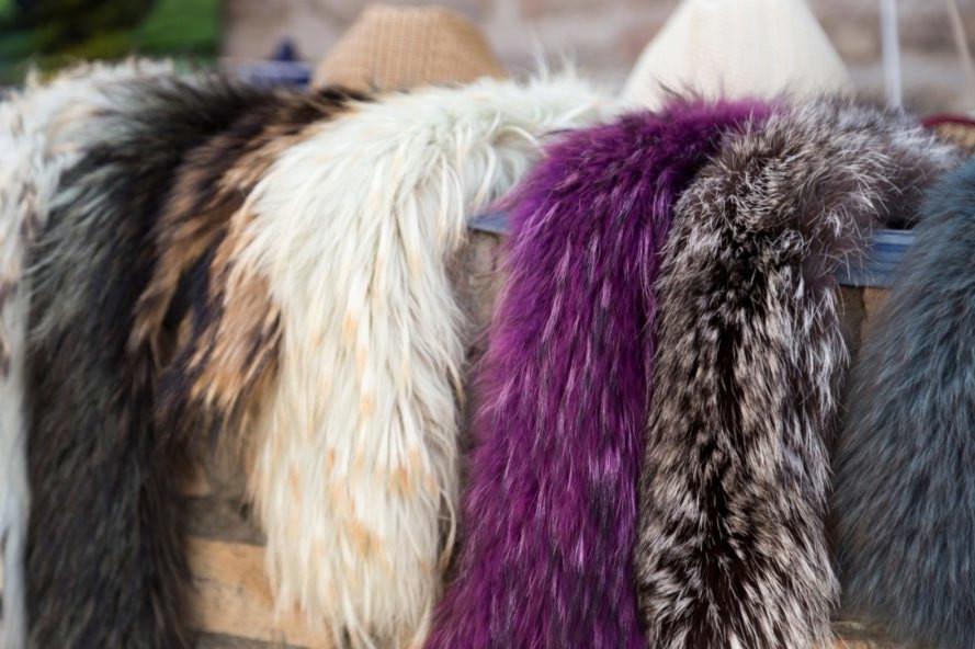 The Debate around furs