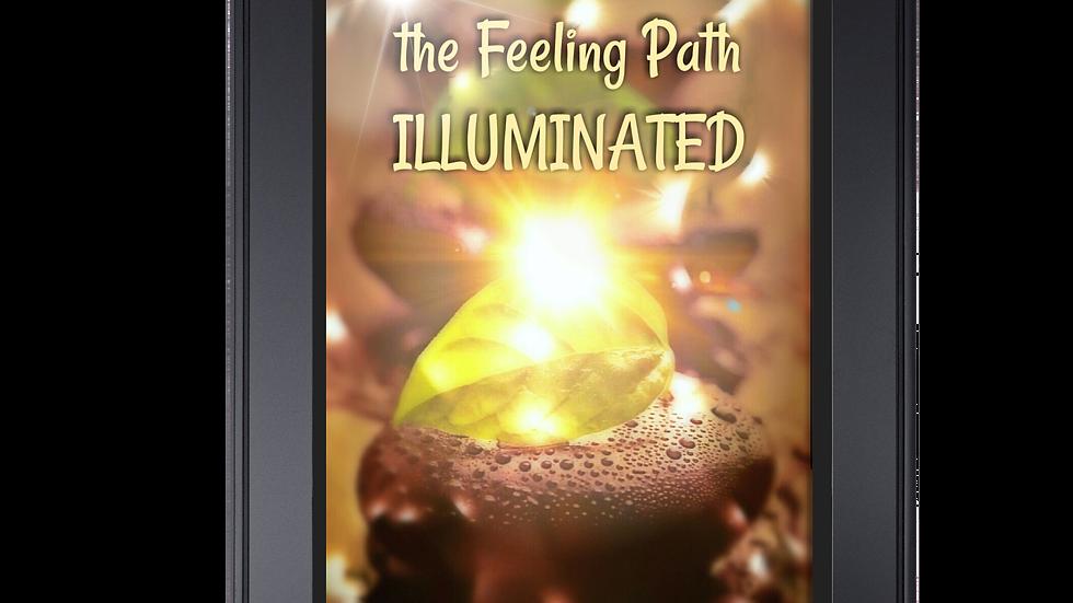 The FEELING PATH ILLUMINATED ebook