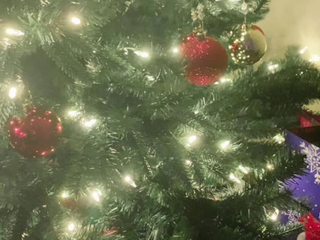 Our First Tree! | Decorate With Us
