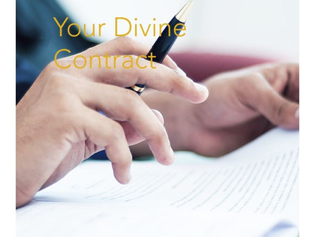 Your Divine Contract