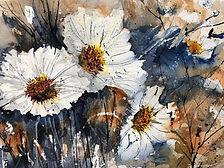 La beauté des fleurs blanches.jpeg