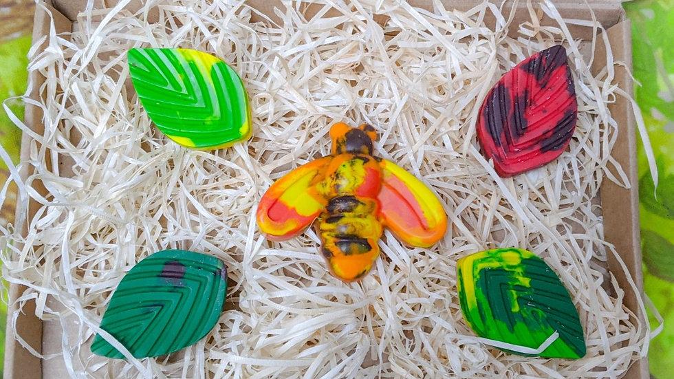 Crayon Set (Bee)