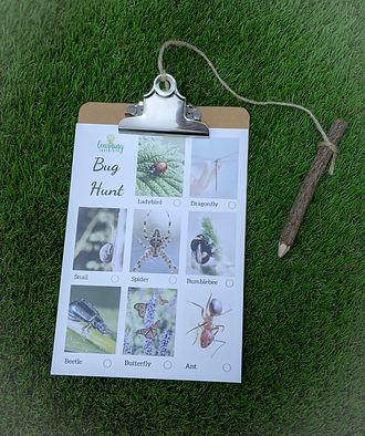 bug hunt cards.jpg