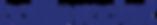 BottleRocket_Logotype_RGB.png