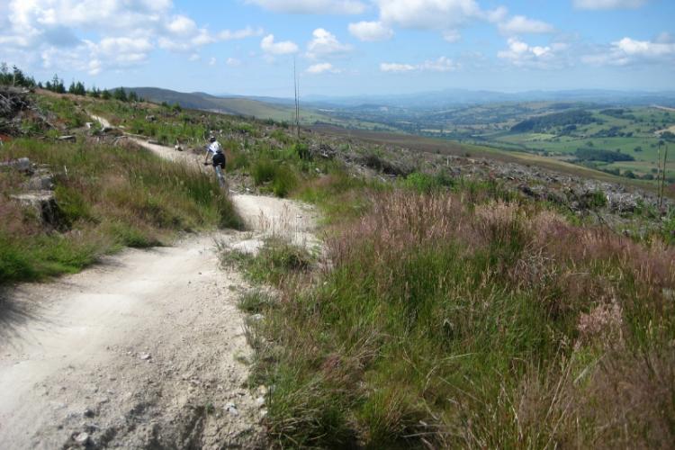 Llandegla - Mountain Biking