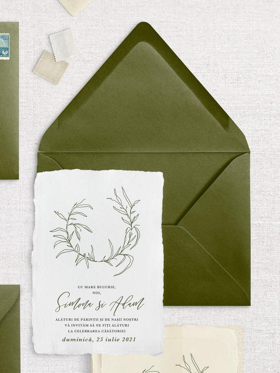 Olive card 1.jpg