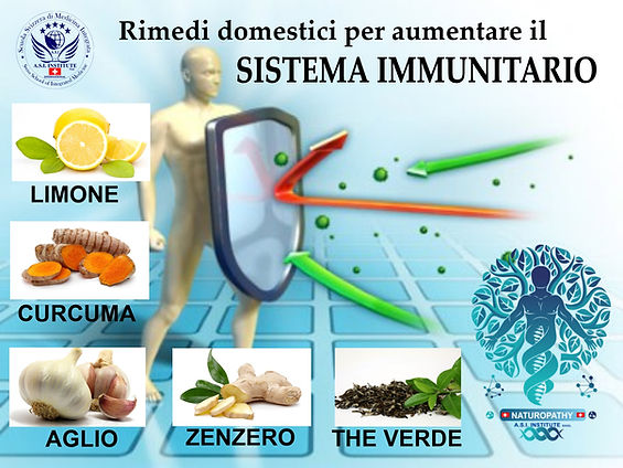 sistema immunitario.jpg