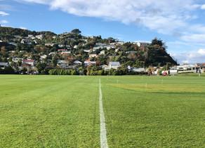 ニュージーランドラグビー最新情報
