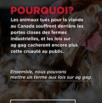 Story 6 (FR) .jpg