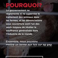 Story 9 (FR) .jpg