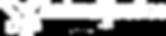 AJ Logo White Transparent No Tagline.png