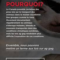 Story 14 (FR) .jpg