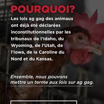 Story 3 (FR) .jpg