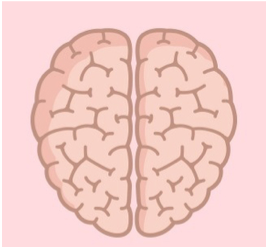 Fokus på (hjärnans) Energi