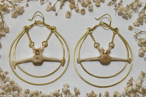 brass armadillo vertebrae earrings