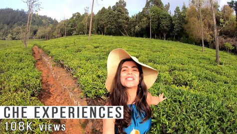 Che experiences