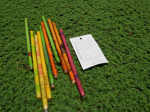 Seed pencil (Set of 10)