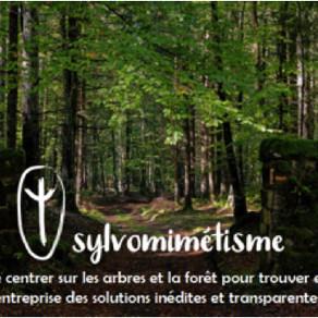 « Immersion en forêt »