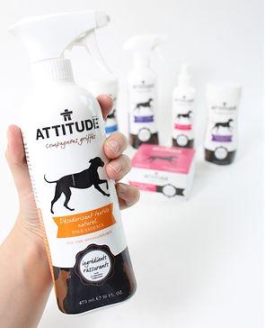 desodorisant_attitude.jpg